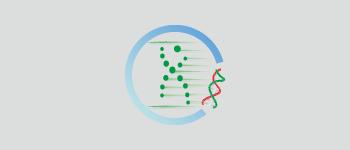 快速基因合成