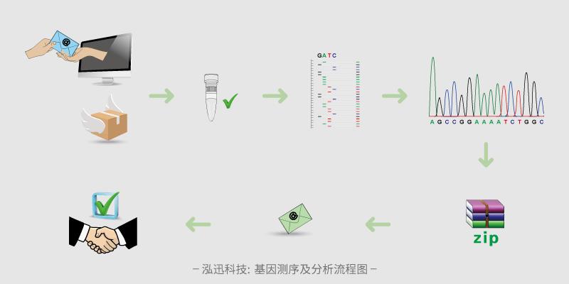 基因测序及分析流程图