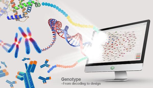 基因测序平台