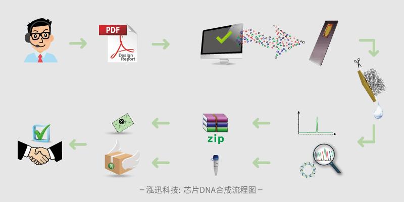 芯片DNA合成流程图
