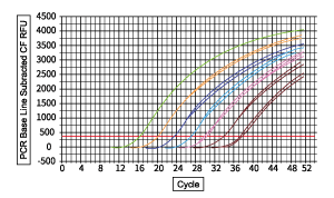 pcr基础曲线