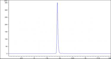 siRNA双链的HPLC谱图