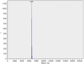 siRNA单链的MS 谱图