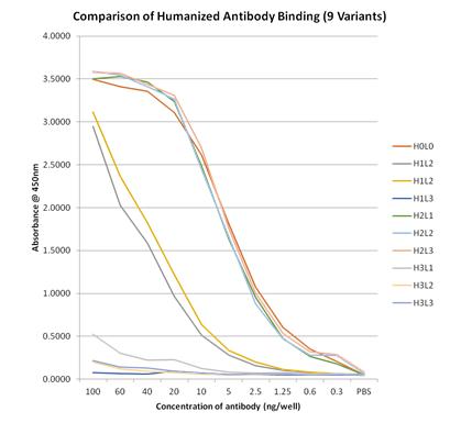 Fusion Antibody (UK) casstudy
