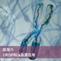 crispri/a及其应用