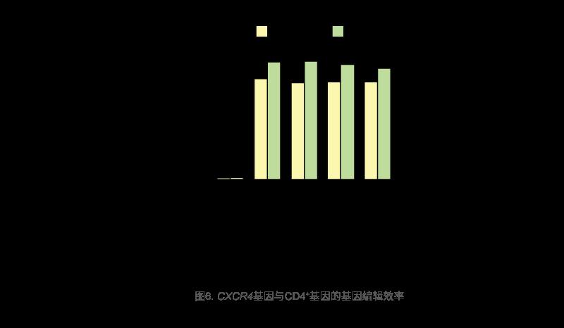 CXCR4基因与CD4+基因的基因编辑效率