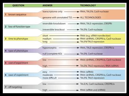 RNAi、TALEN及CRISPR选择指南