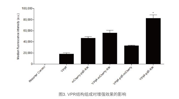 VPR结构组成对增强效果的影响