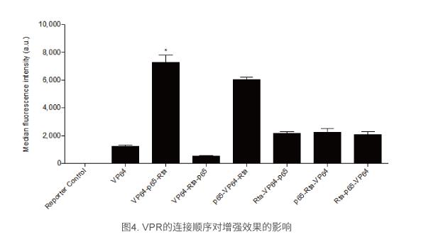 VPR的连接顺序对增强效果的影响