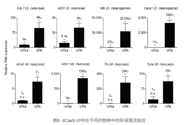 dCas9-VPR在不同的物种中的转录激活效应