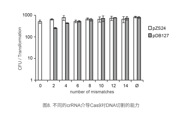 不同的crRNA介导Cas9对DNA切割的能力