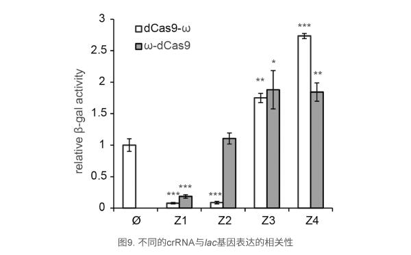 不同的crRNA与lac基因表达的相关性