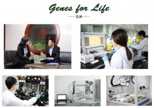 genes for life suzhou