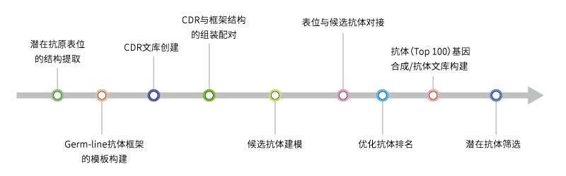 抗体de novo设计服务流程
