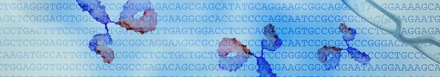 单细胞抗体测序分析服务