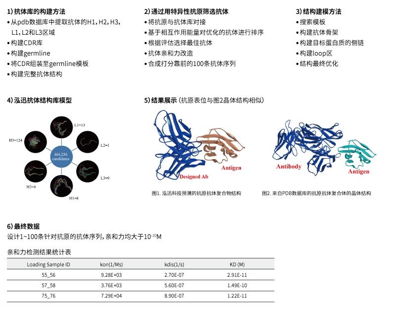 抗体de novo设计案例